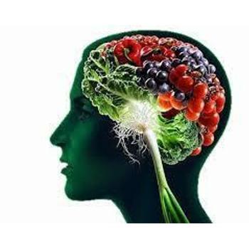 Sphère cérébrale et nerveuse
