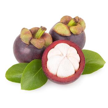 mangoustan - NUTRANAT